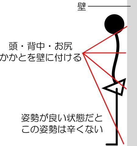 猫背の簡単セルフチェック方法