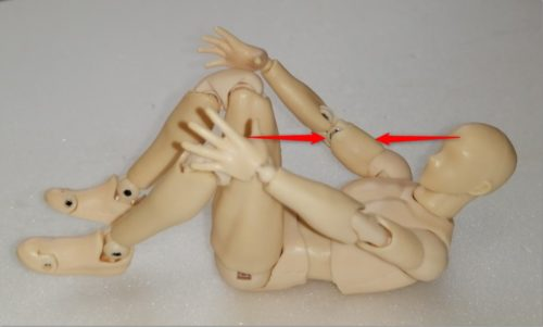 脊柱起立筋中部のストレッチ