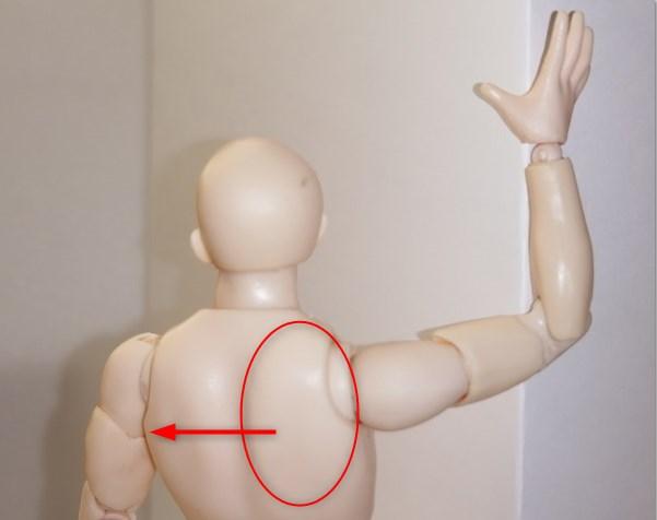 大胸筋ストレッチを後ろから見た状態